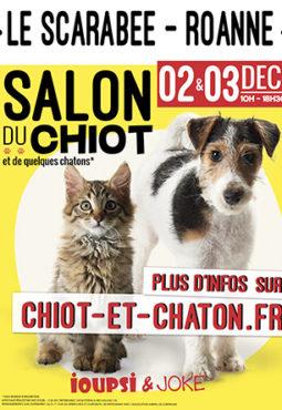 Salle de spectacles de concerts et d 39 v nements roanne for Salon du chiot marseille
